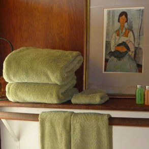 Village Farm towels, painting shampoo, conditioner and tissue box on shelf