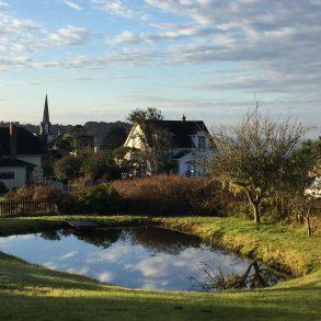 Village Farm Pond with cloud reflection